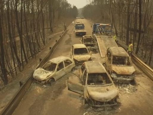 "Pedragao Grande Fire's ""Trial of Shame"""