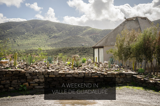 A Weekend in Valle de Guadalupe