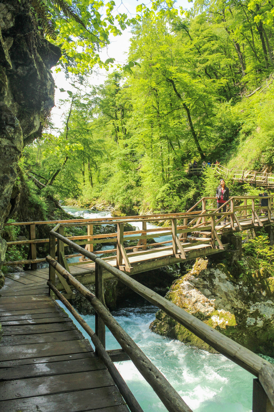 Walkways at the Vintgar Gorge