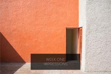 WEEK ONE IMPRESSIONS
