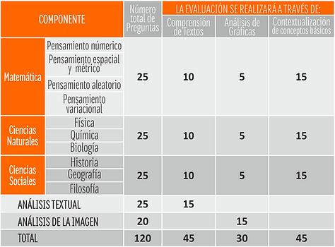 estructura academica PREUNIVERSITARIO 20