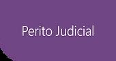 PERITO JUDICIAL.png
