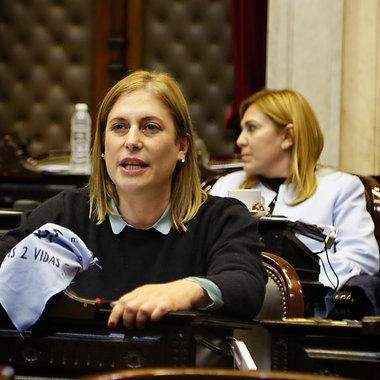 Sesión en la Cámara de Diputados de la Nación