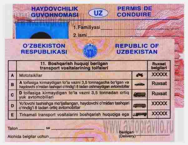 Перевод водительского удостоверения Узбекистан