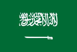 Документы в посольство Саудовской Ар
