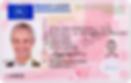 Перевод водительского удостоверения  Польша
