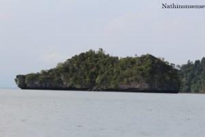 the shoe island