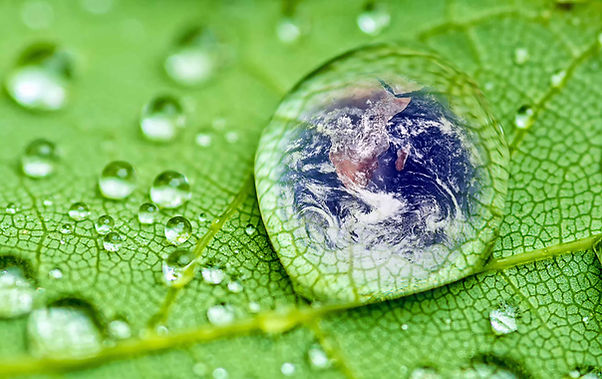 Waterdrop-Earth-on-Green-Le.jpg