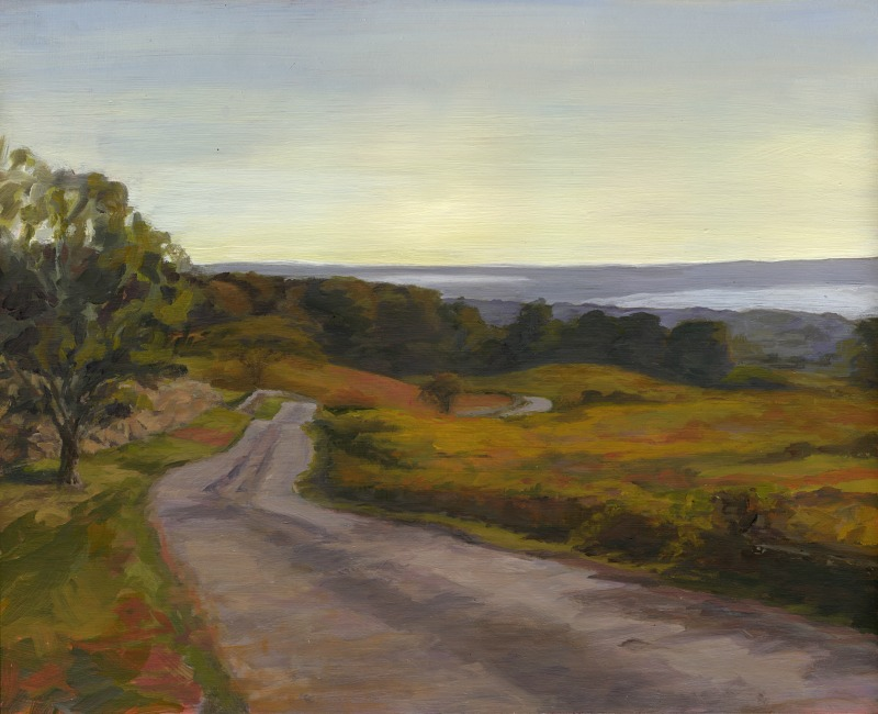 Prospect Hill Rd. Over Looking Menemsha Bight.jpg