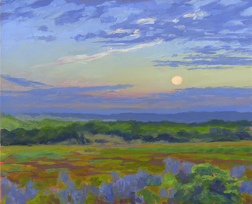 Moon Set Over Salt Marsh