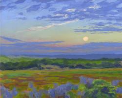 Moon Set Over Salt Marsh
