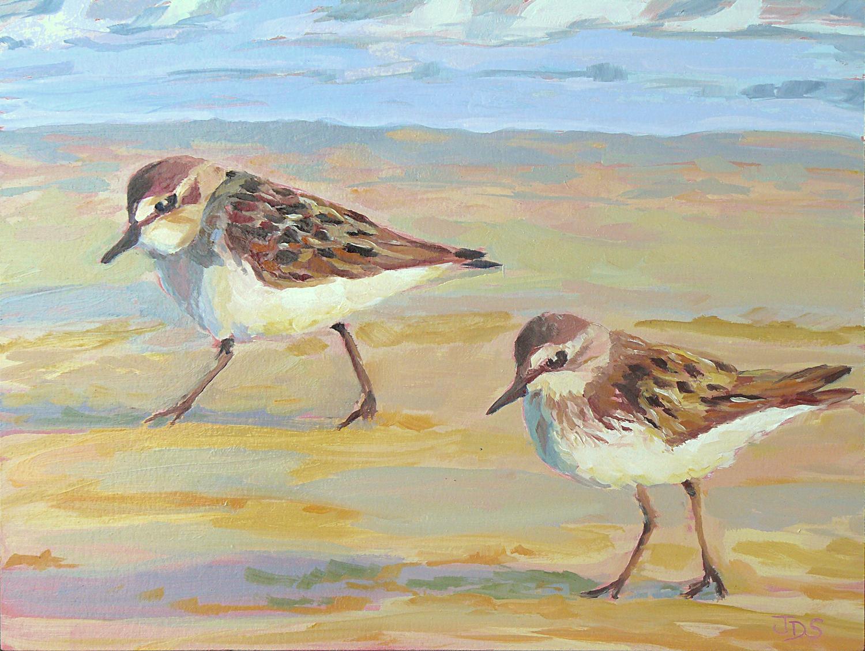 On the Beach Sanderlings