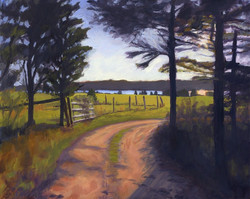 Road to Pear Tree Cove