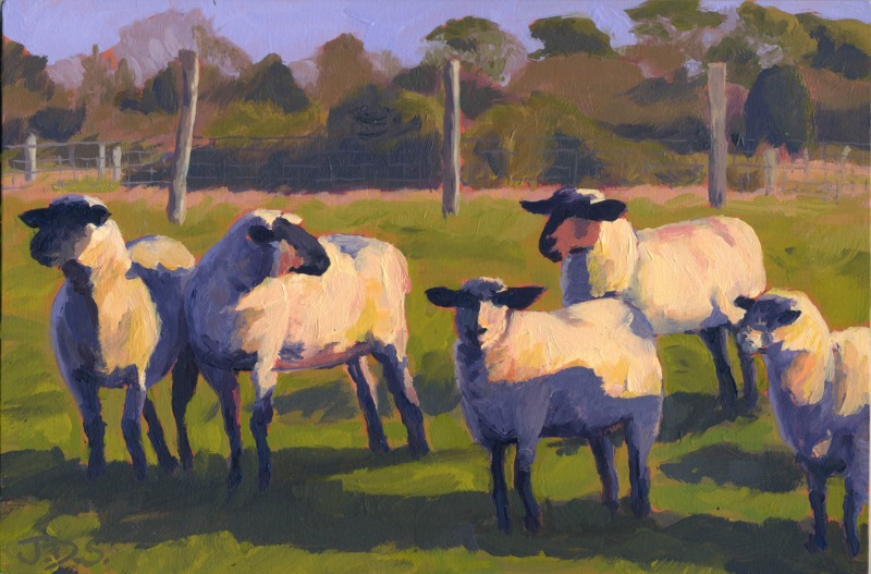Flat Point Flock #3 or Facing into the Sun-800x527.jpg
