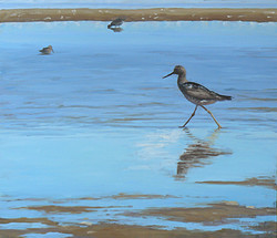 Walking on the Sand Flats