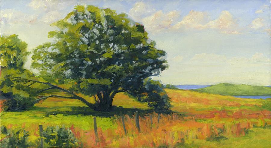 South Pasture Oak