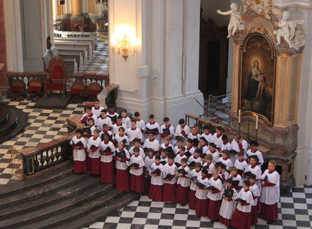 The Schola's plans in 2019-20