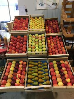 Présentoir Pommes-Poires