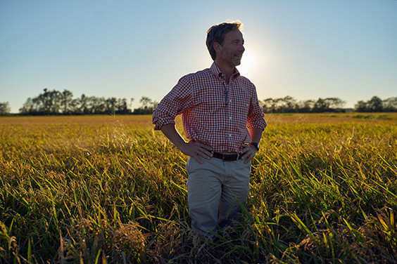 Mike Fruge standing in a rice field in front of the setting sun.