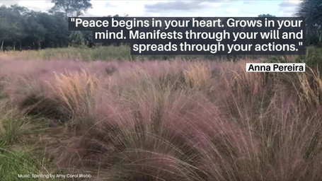 Peace begins in your heart