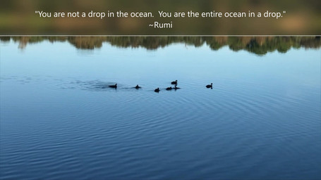You are not a drop...