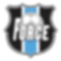 Force Logo soccer.png