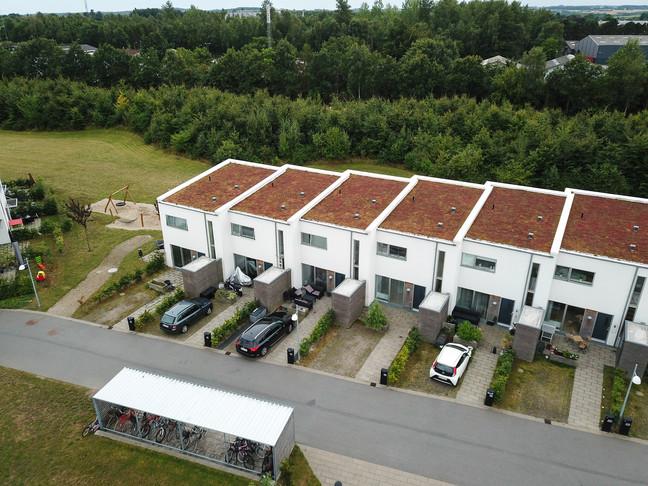jagtenborg-13jpg