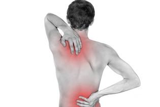 Ver o corpo como um todo: o exemplo da Fibromialgia