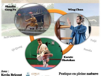 Stage Multi-Martial Intensif