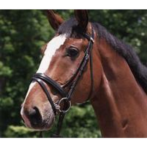 Stubben SNAFFLE BRIDLE 1001 WATERFORD