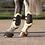Thumbnail: QHP Fetlock boots Ontario