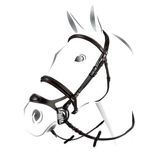 EQUESTRO COMBINED MODEL BRIDLE