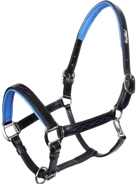 LEATHER HALTER CL