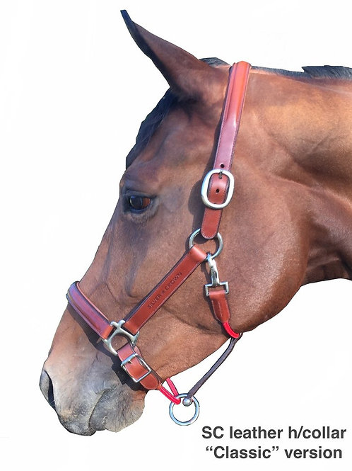 Silver Crown all-leather headcollar