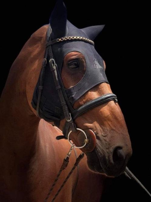 Fenwick LIQUID TITANIUM® MASK WITH EARS