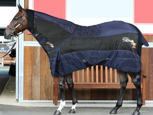 Horses Thermo HOT Stable Rug + Neck Cover 300g