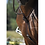 Thumbnail: IHWT MARTINGALE C-CURE  