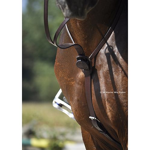 IHWT MARTINGALE C-CURE  