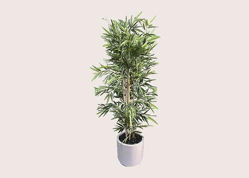 סט צמחייה מלאכותית - Leon