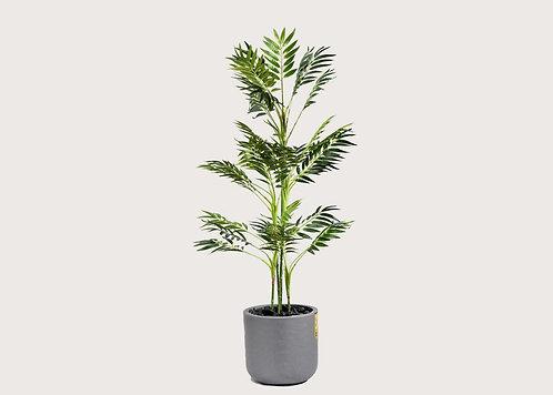 סט צמחייה מלאכותית - Antigua
