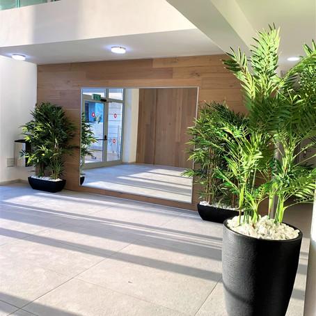 צמחייה מלאכותית בלובי הבניין המשותף