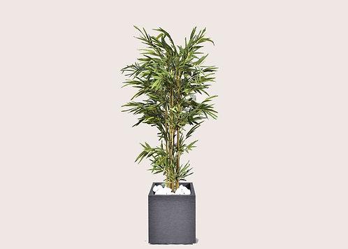 סט צמחייה מלאכותית - Tulum