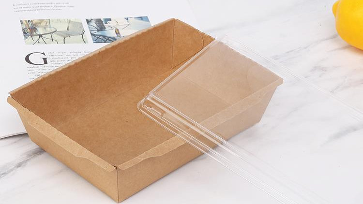 Eco friendly disposable Paper Container (PLA or PE Lamination)