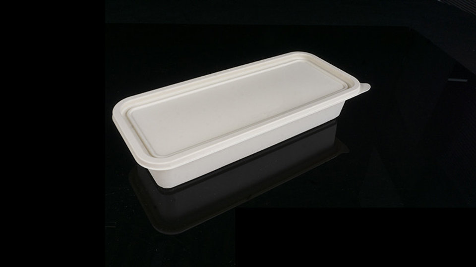 Eco friendly corn starch pulp food container with lid