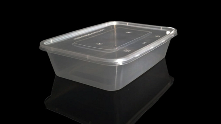 Eco friendly disposable lunch box with lid - 500ml