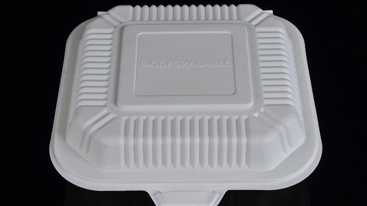 Eco friendly sugarcane bagasse square clamshell container