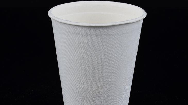 Eco friendly sugarcane bagasse cup