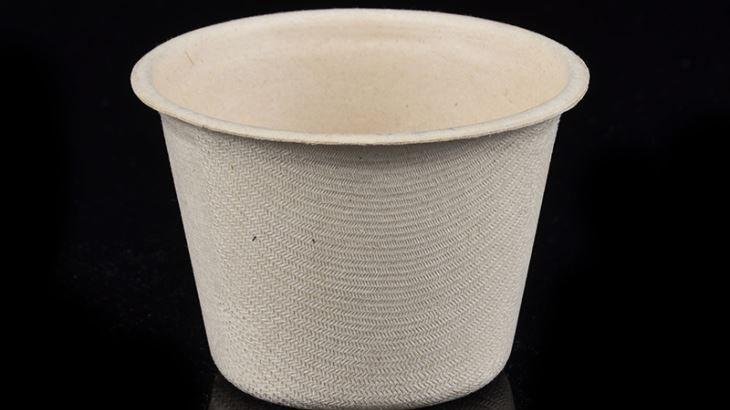 Eco friendly wheat straw pulp food bowl