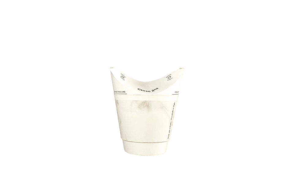 Double Wall Hot Cup 8oz/250ml