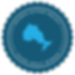 OntarioAuthorProject-Badge-YAWinner-Blue